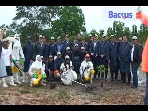 PROYECTO ECOPARQUE VIVE RESPONSABLE DE BACKUS