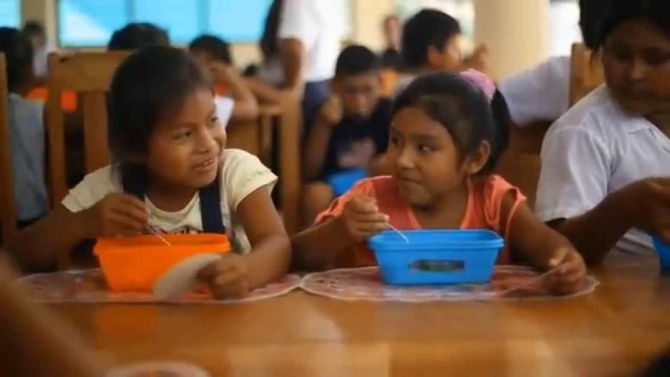 VIDEO: UN DIA EN QALI WARMA